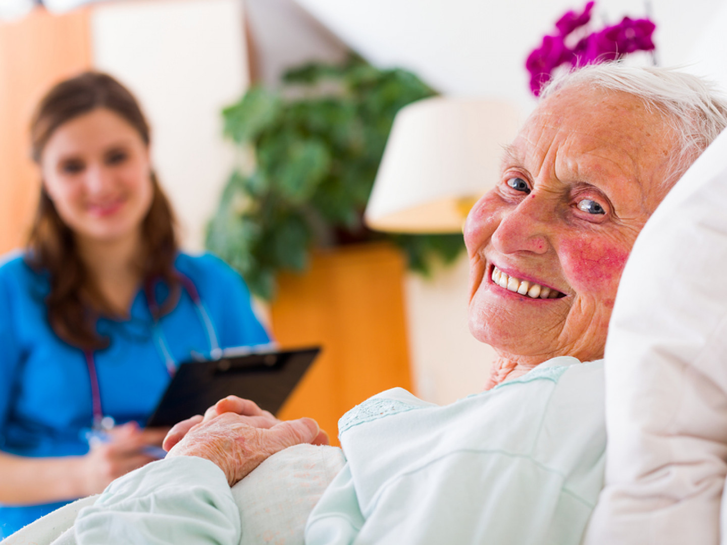 Senior care services charlotte nc
